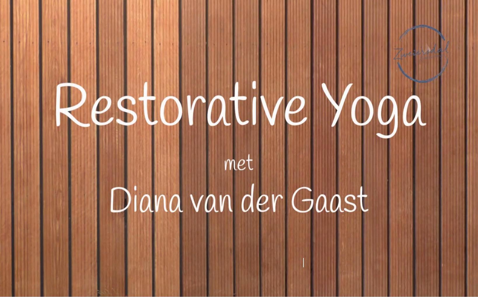 Restorative Yoga bijscholing olv Diana van der Gaast